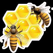 Apis store магазин мёда