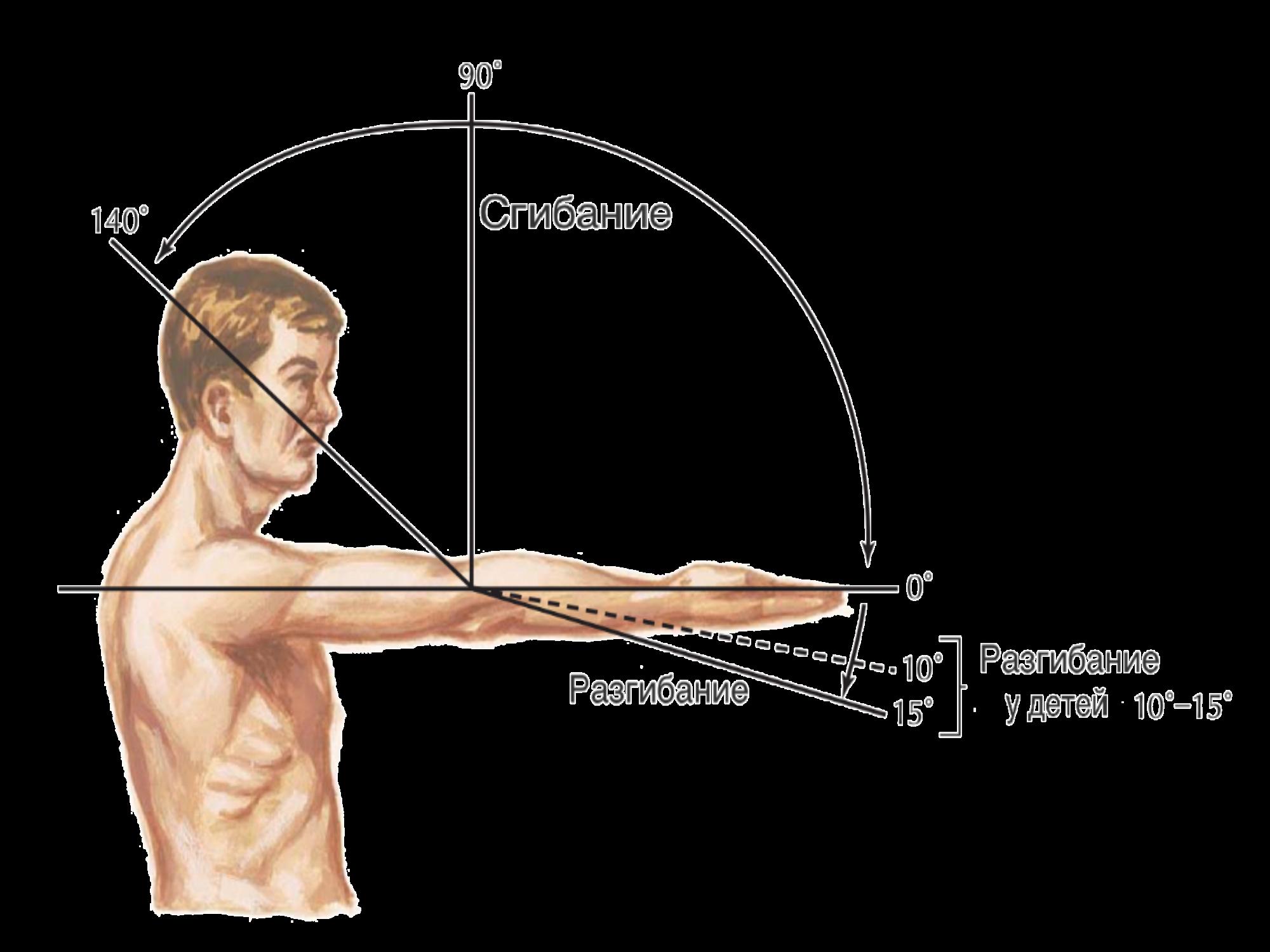 Амплитуда движения суставов суставная мышечная боль в правой лопатке