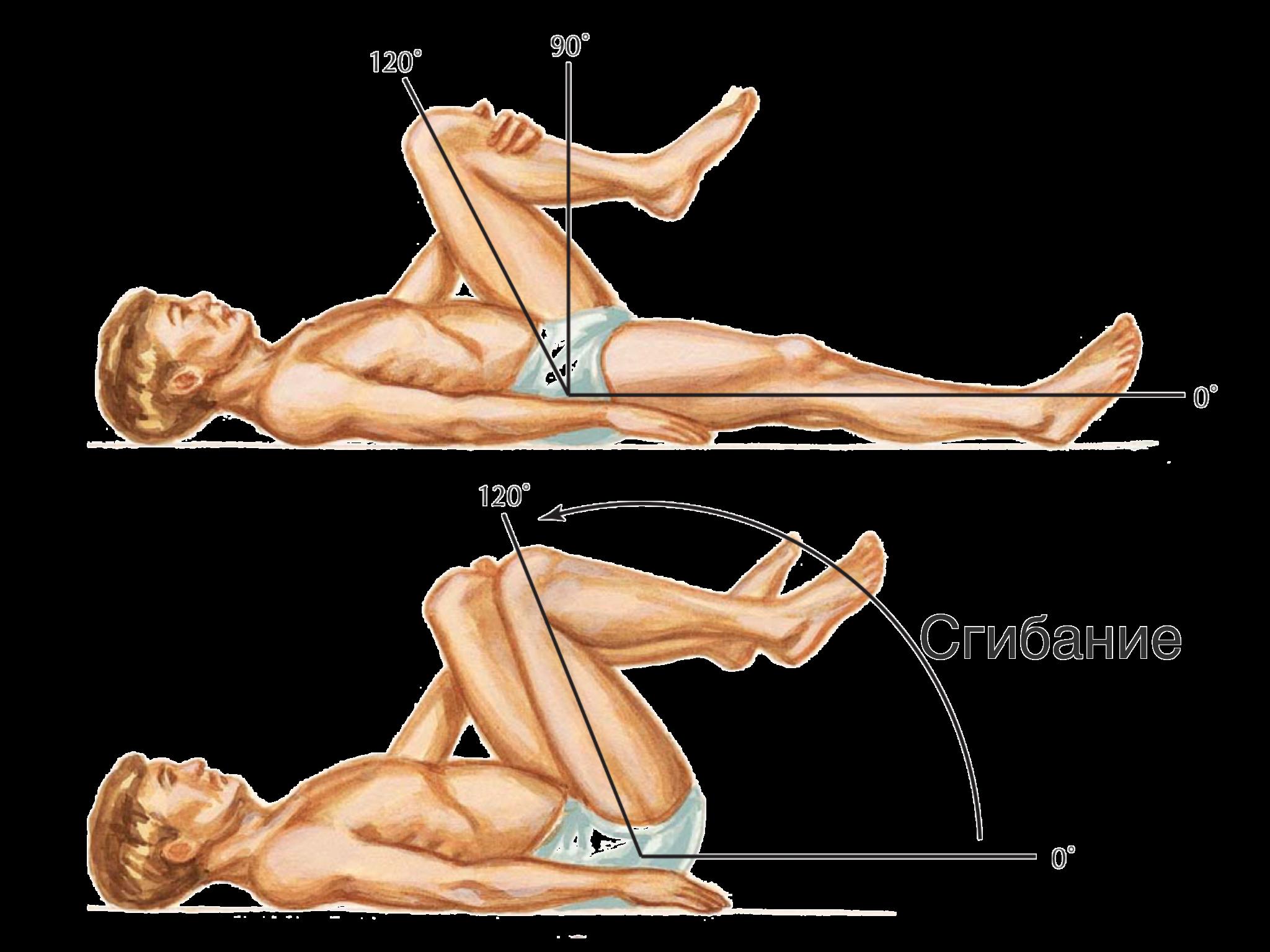 Объём движений в тазобедренном суставе ортез на плечевой сустав правый/левый арт.rs-129