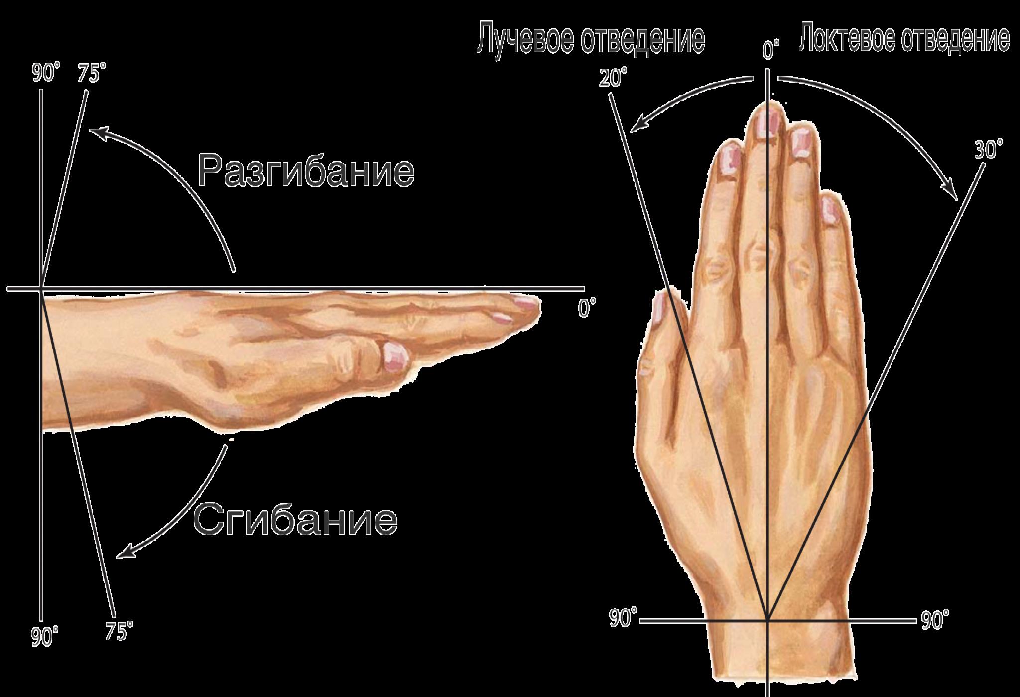 Кистевом суставе шалтай-болтай упражнения для суставов