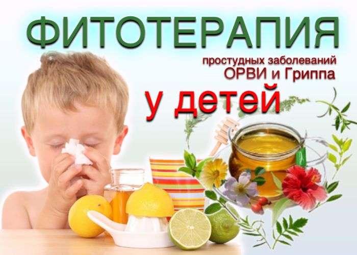 Фитотерапия простудных заболеваний; ОРВИ и гриппа у детей