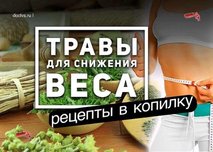 Травы для снижения веса