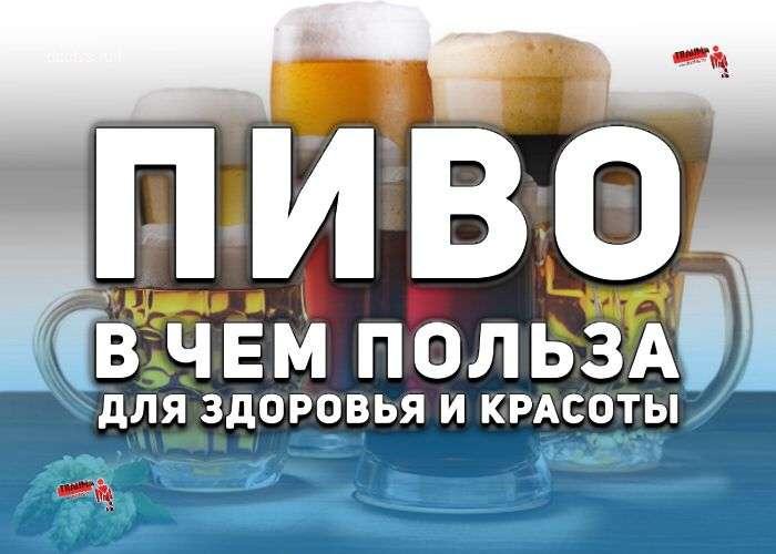 пиво в чем польза пивные дрожжи