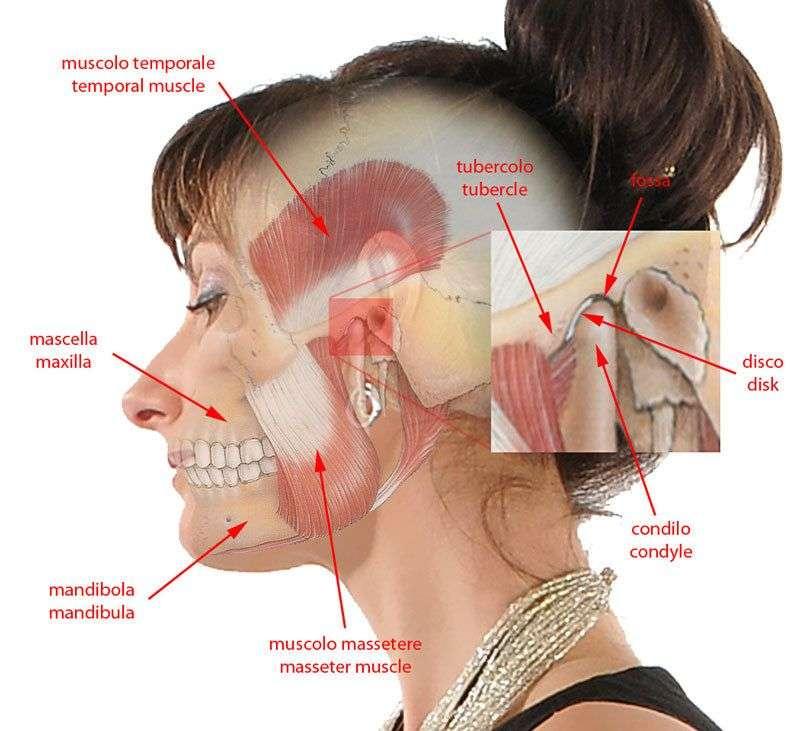 Щелкает сустав нижней челюсти покраснение глаз боль в мышцах, суставах, слабость