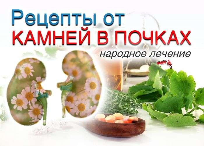 Лечение травами при мочекаменной болезни. Лечебное питание и фитотерапия