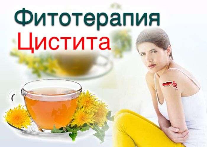 Лечебное питание при цистите. Фитотерапия при цистите