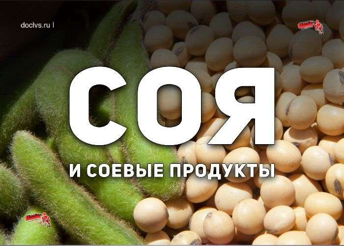 соя и соевые продукты
