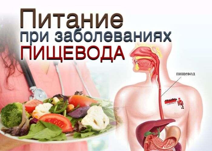 питание при заболевании пищевода