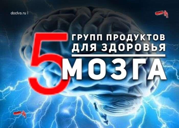 5 продуктов для головного мозга