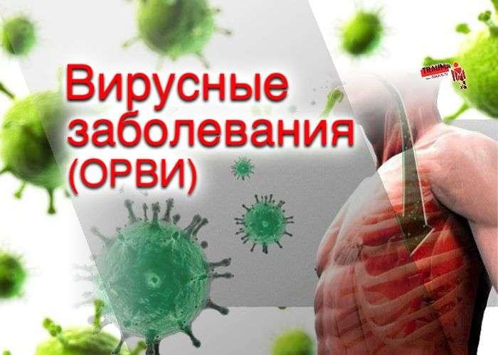 Вирусные заболевания - ОРВИ