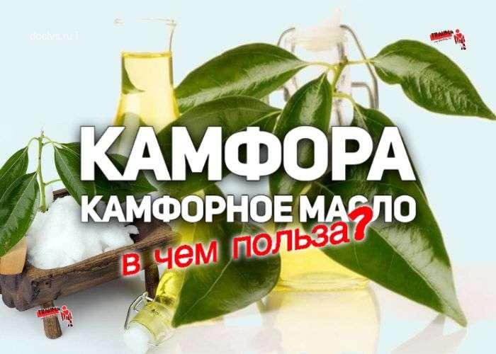 Камфорное масло: для чего применяют в косметологии и народной медицине