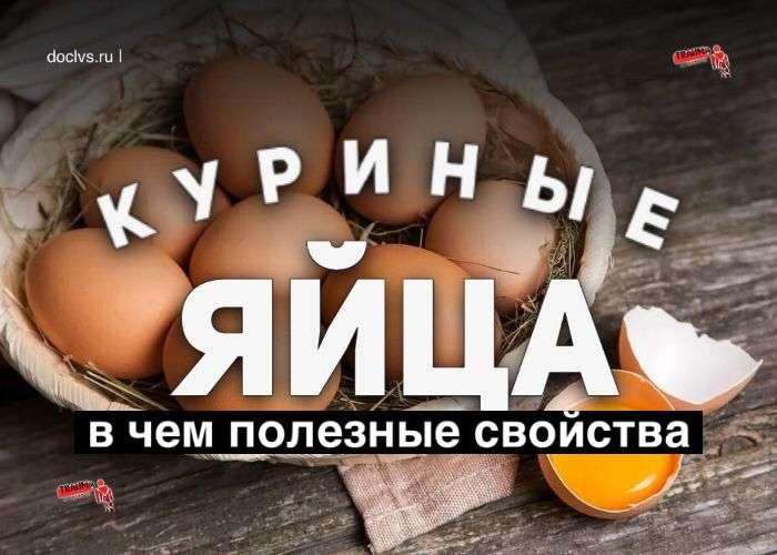 Куриные яйца: в чем полезные свойства