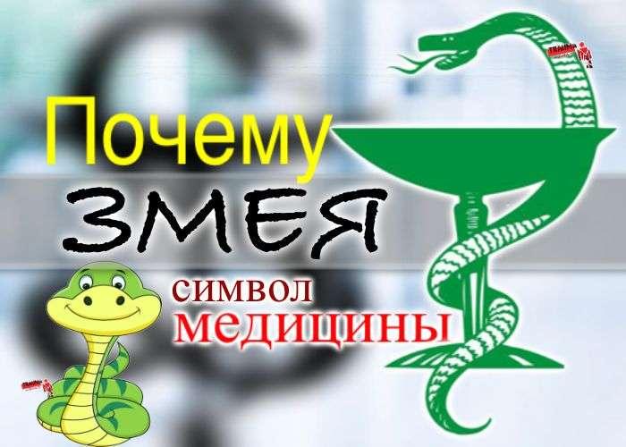 Почему змея - символ медицины