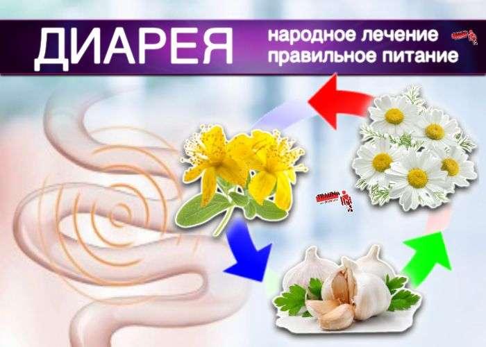 Понос: правильное питание, народное лечение травами