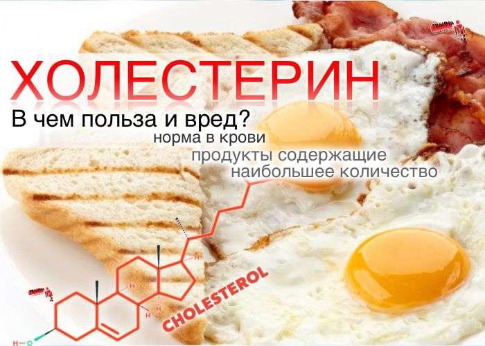Холестерин - норма холестерина в крови; вред и польза; продукты содержащие холестерин