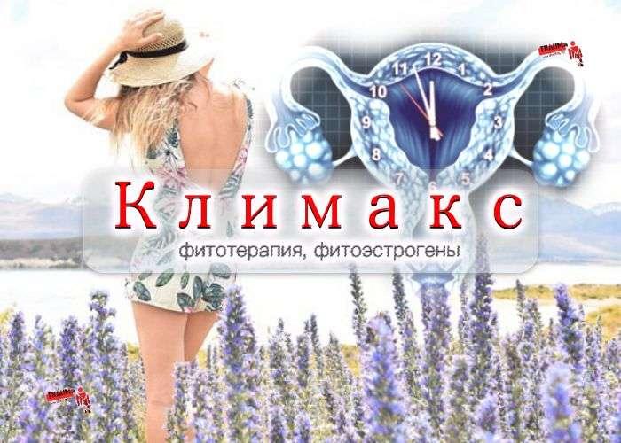 климакс