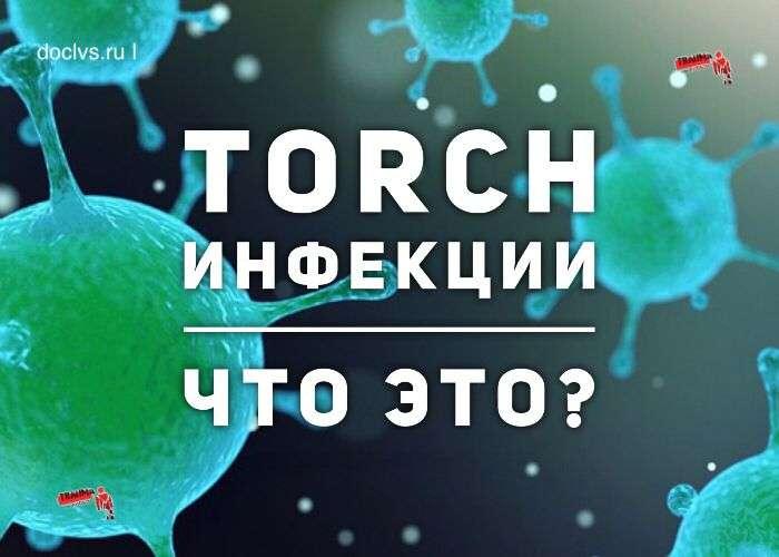 TORCH инфекции это