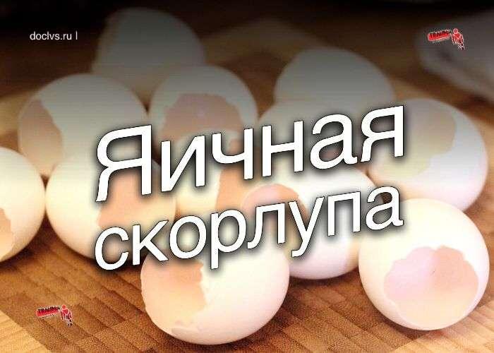 Яичная скорлупа: минерально-витаминная кладовая